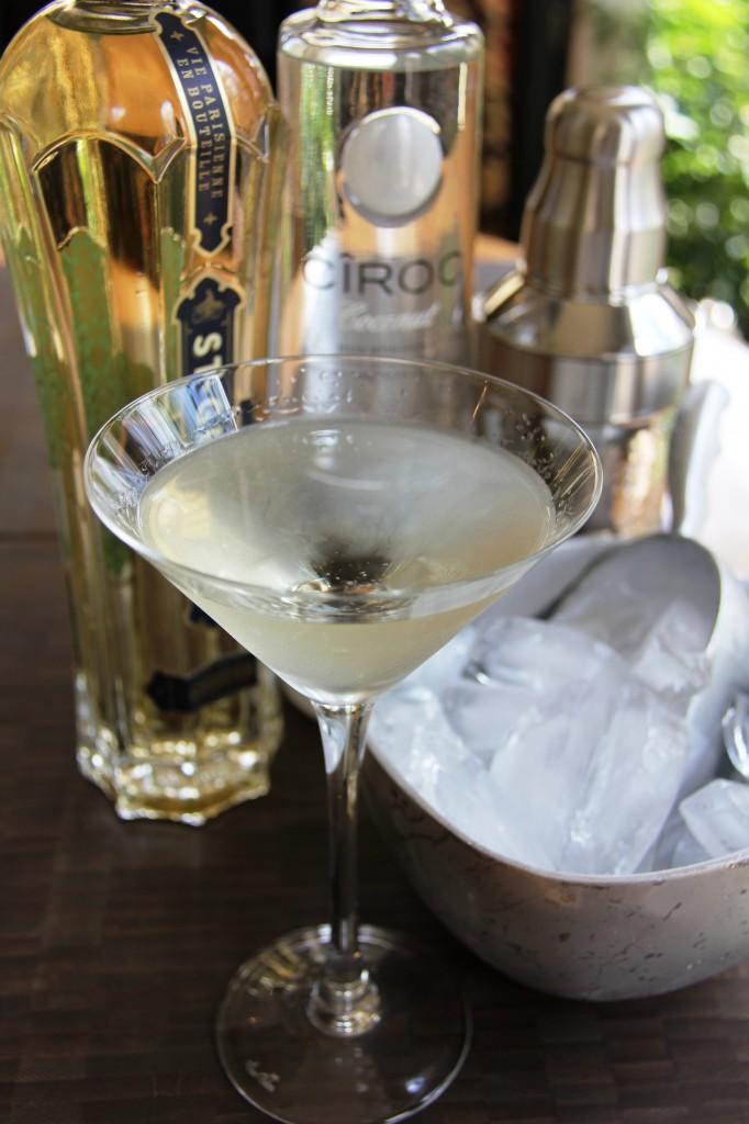 coco chanel martini 5