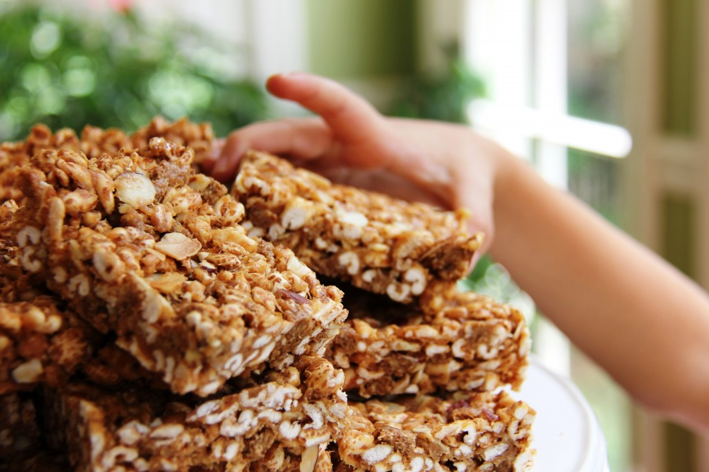 Kid Friendly Protein Bars 5