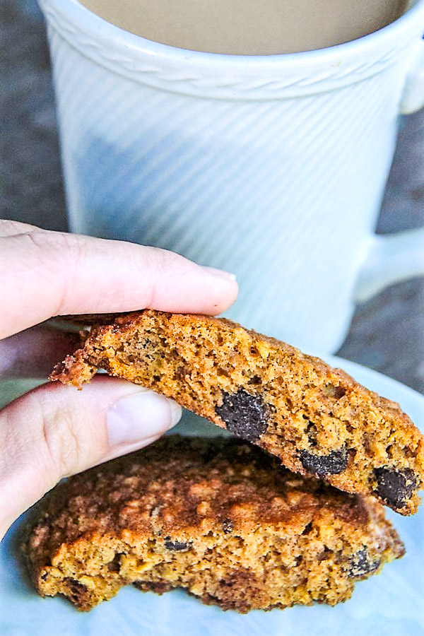 pumpkin chocolate chip cookies 3