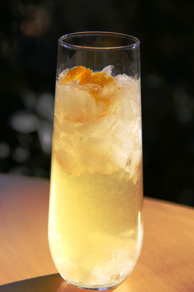 gin citrus cocktail