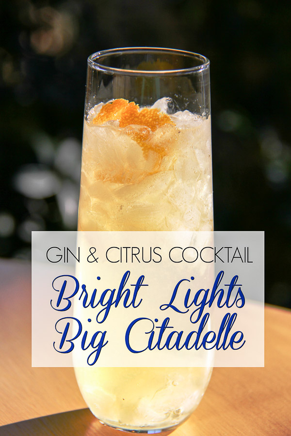 gin citrus cocktail 9