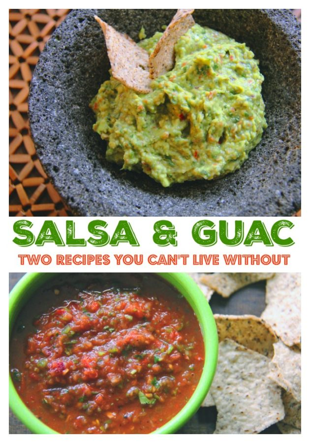 Salsa and Guacamole 1