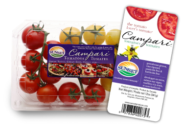 bruschett recipe campari tomatoes