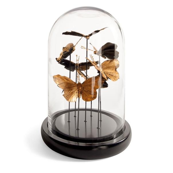 Butterfly Glass Dome Sumptuous Living Seasonal Goodies