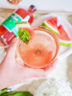 watermelon vodka champagne cocktail-13